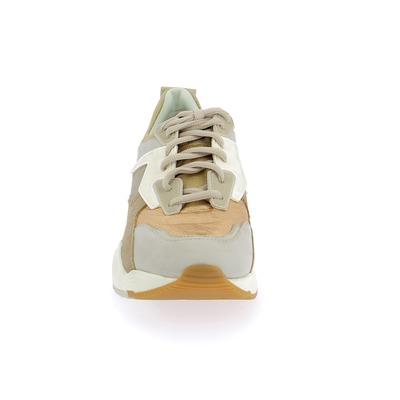 Sneakers Timberland Goud