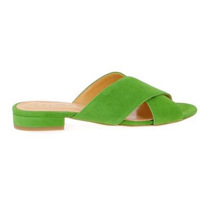 Mulles Di Lauro Vert