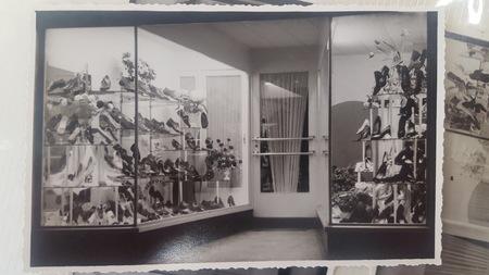 Le magasin déménage en face, Rue du Poivre 31 à Renaix