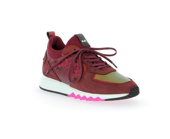 Sneakers Floris Van Bommel Bordeaux