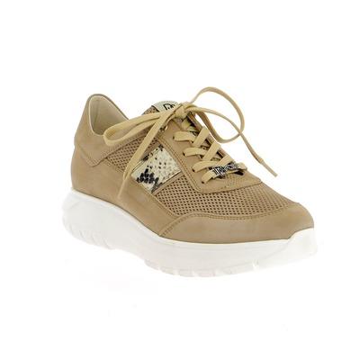 Sneakers Dlsport Taupe