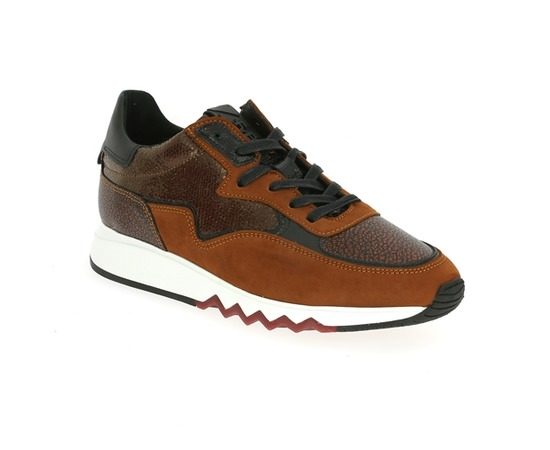 Sneakers Floris Van Bommel Bruin