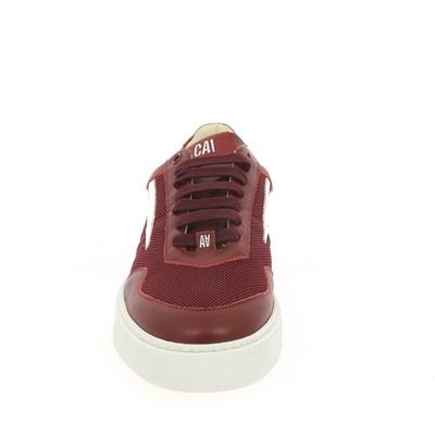 Sneakers Caval Bordeaux