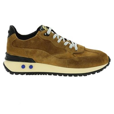 Sneakers Floris Van Bommel Camel