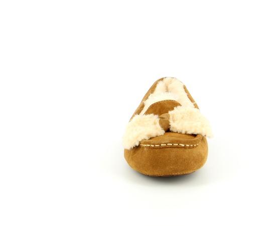 Pantoffels Ugg Chesnut