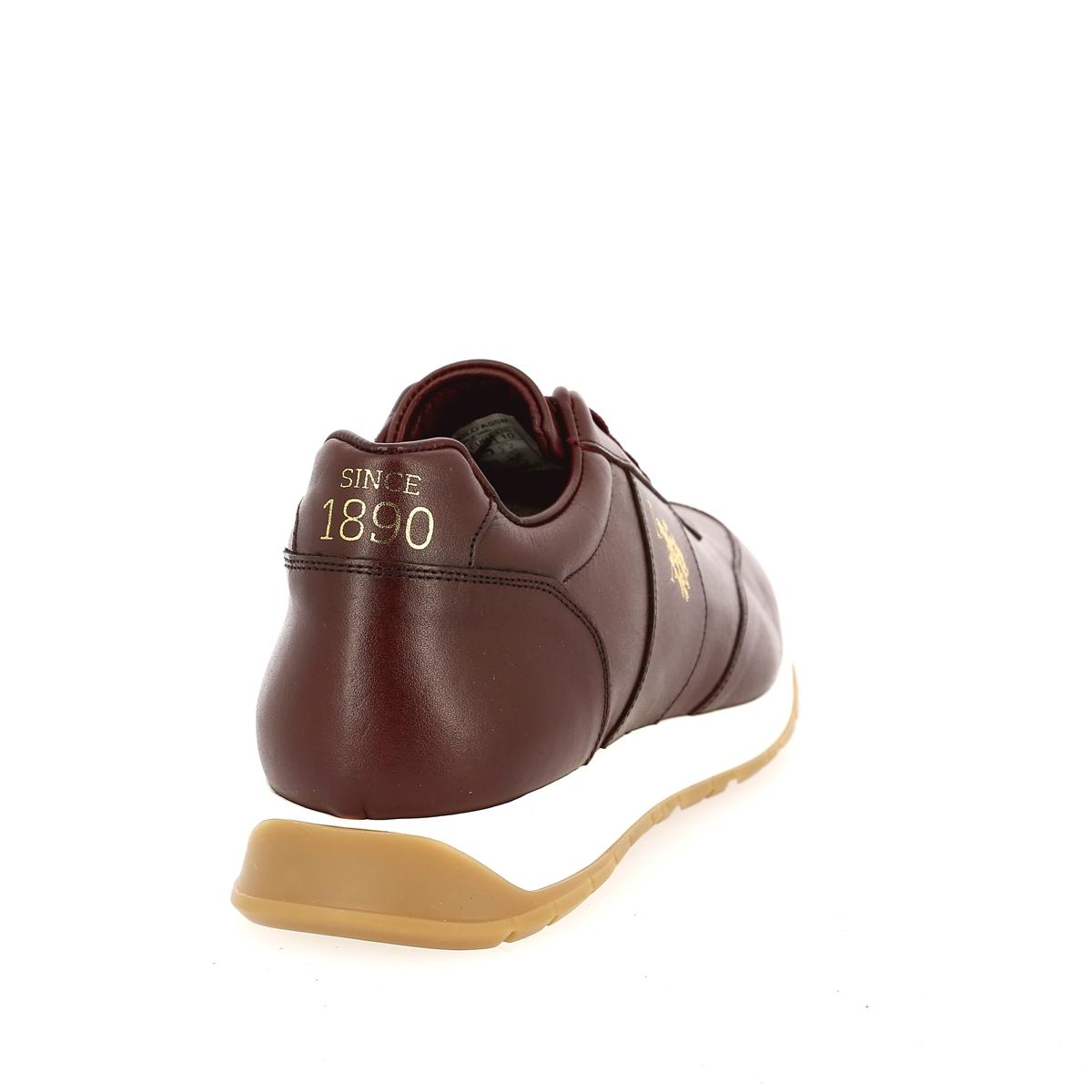 Us Polo Assn Sneakers bordeaux