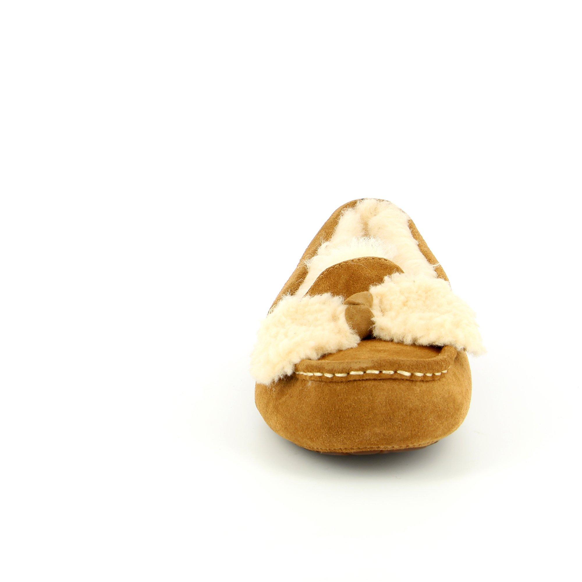 Ugg Pantoufles chesnut