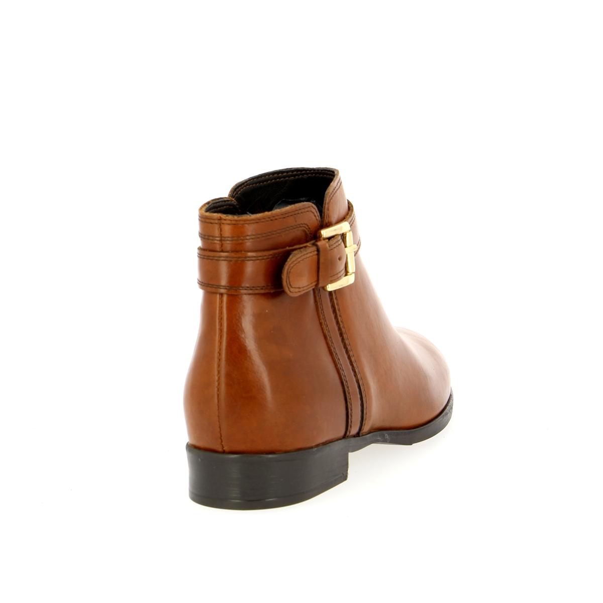 Cypres Boots cognac